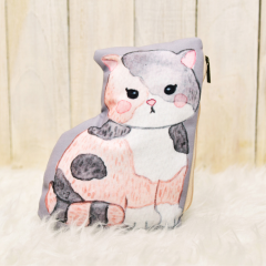 Pencil Case Scottish Fold
