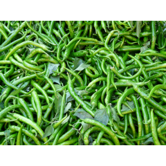 Curly green chilli -medium hot