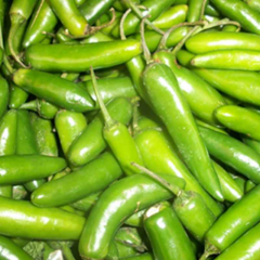 Small Green chilli -very hot