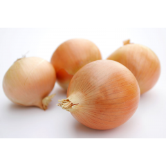 brown skin onions